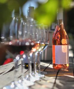 Half-Day Wine Tasting